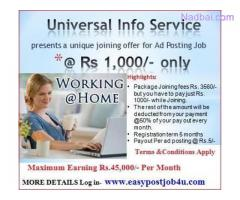 Earn at your Leisure by Working Online.