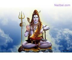 Husband Vashikaran Mantra On Phone (+919529850231)