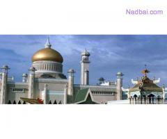 Dargah-A-Hazrat +91-7339970545 Love Marriage Specialist Molvi Ji Switzerland