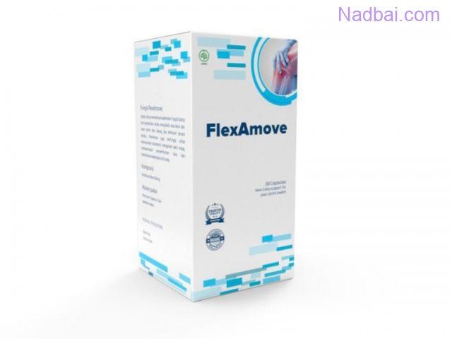 flexamove indonesia