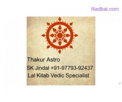 Best famous astrologer Lal Kitab solutions+91-9779392437