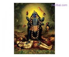 Family Problem Solution Guru Ji+91-8053091227 all india ...