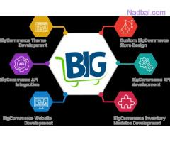 Hire Bigcommerce Developer in India