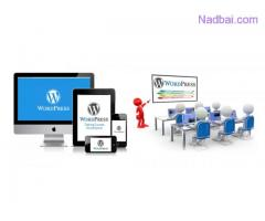 Wordpress Classes in Laxmi Nagar