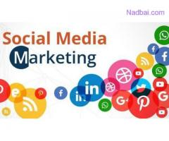 Best Social Media Marketing Services in Delhi NCR