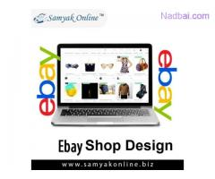 eBay Shop Design in New Delhi