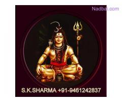 bangalore ( BHAAGHI )+91-9461242837 black magic expert baba ji in austria