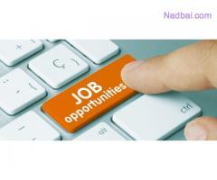 Urgently Need A Marketing Executive In Ahmadabad, Vadodara And Mumbai