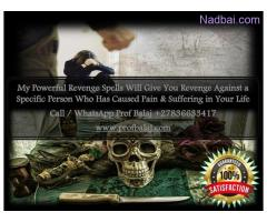 Most Powerful Revenge Spells to Destroy Enemy Call +27836633417