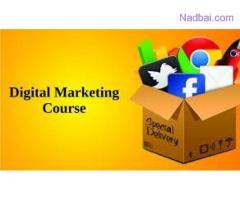 SEO training institutes in Noida
