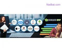 Best Institute for Web Development Training in Faridabad