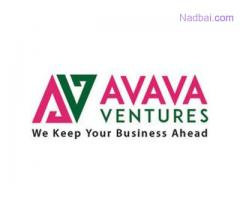 Web Design Company in Coimbatore - Avava Ventures
