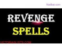 Revenge Spells to Punish Someone Call +27789518085