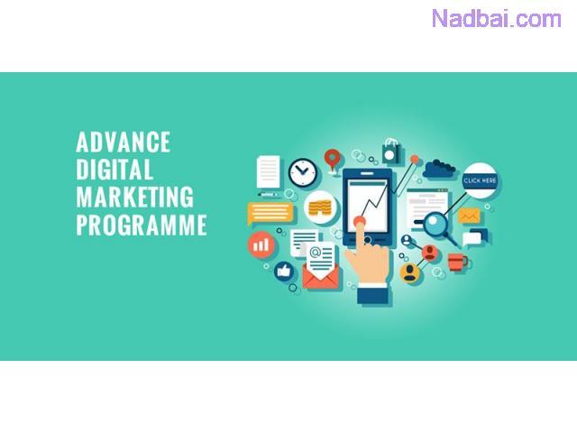 Digital Marketing Courses & Training Institute in Bangalore