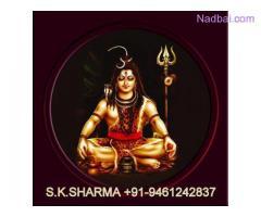 KERALA ( BANGALI BABA) +91-9461242837 Love Marriage Specialist Baba ji in UK USA