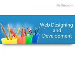 Website Development & Designing