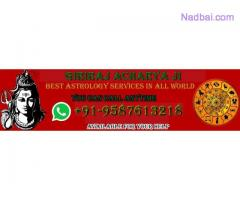 love vashikaran specialist baba ji +91-9587613218 delhi