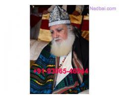 Punjab Love Spells Caster +91-9306549644 Love Marriage