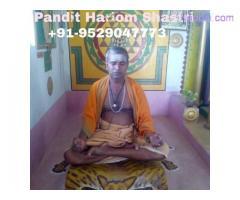 Love marrige speclist pandit hari om shastri  call now+91-9529047773