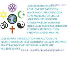 free love astrology services 8955313463
