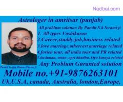world famous astrologer in mumbai +91-9876263101