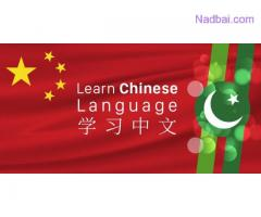 Best Chinese Language Training Online with Certification