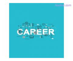 Job Vacancy Of Purchase Manager For Female In Jamnagar