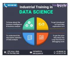 Digital Marketing Online Certification Training Course Noida