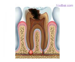 Put an End to Your Painful Oral Problem at the Best Wisdom Tooth Removal Cost