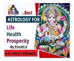 Love back astrologer in india +91-95213006865