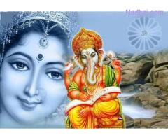 online  ex Love problem marriage solution pandit ji+91-7232878471 ,india