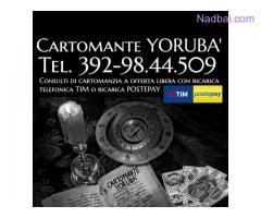 www.cartomante-yoruba.blogspot.com