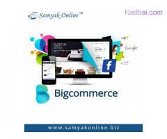 Hire Bigcommerce Web Developer
