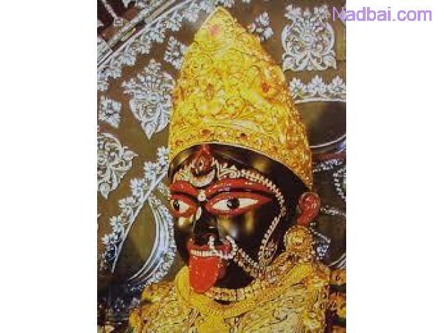 Lady astrologer in chandigarh punjab