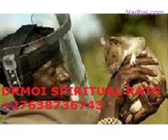 Lost lover spell caster & Spiritual rats in Everton Sebokeng Lenasia +27638736743