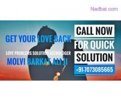 +91=7073085665 Love Problem Solution Specialist baba ji USA